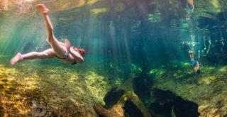 Florida_Natural_Spring_Blue_Spring_State_Park